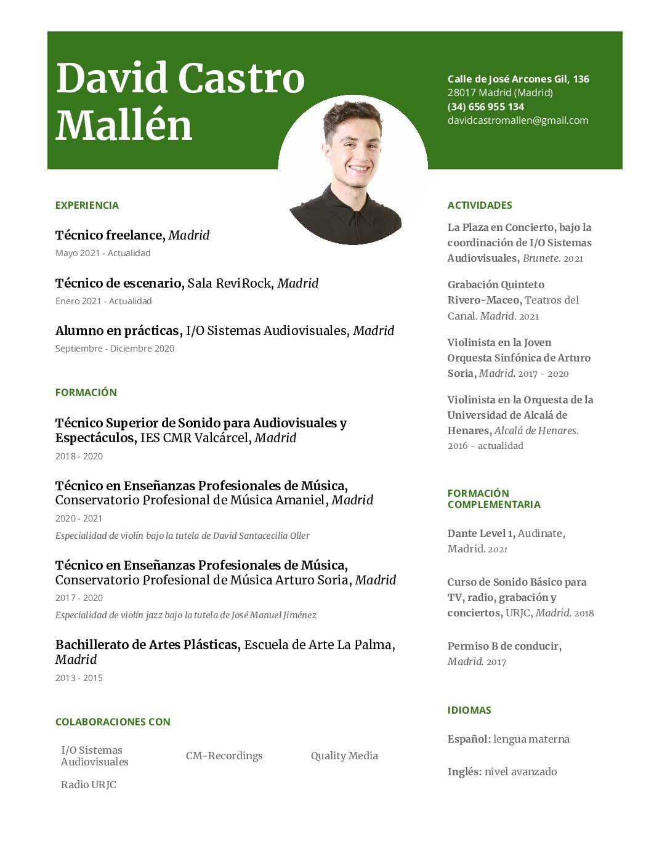 David Castro Mallén_Curriculum vitae